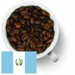 Гватемала расширяет свое присутствие на рынке кофе