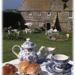 Любители чая