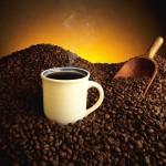 Основные сорта несмешанного кофе (продолжение)