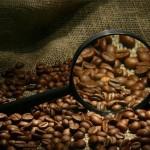 Основные сорта несмешанного кофе (окончание)
