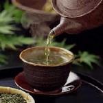Правильно завариваем зеленый чай