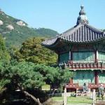 В Южной Корее открылся новый музей чая