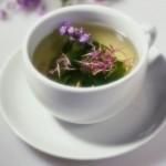Рецепт полезного чая из руты