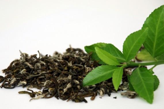 Зеленый чай перед завариванием
