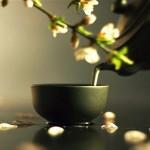 История чая в Китае. Окончание