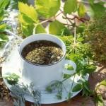 Рецепт приготовления лечебного чая для оздоровления почек