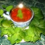 Рецепты чая для молодых мам. Чай с мелиссой