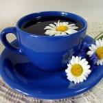 Ромашковый чай принесет большую пользу больным диабетом