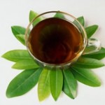 Лечебный черный чай (продолжение)