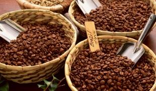 Кофейные зерна в специальных корзинах