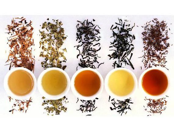 Четыре вида самых элитных сортов чая