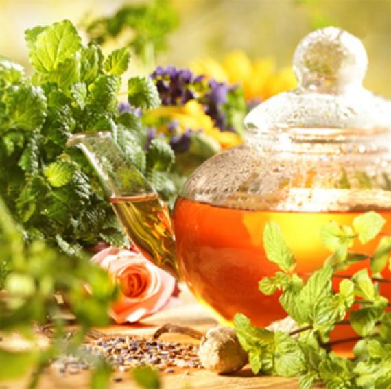 польза синего чая из тайланда