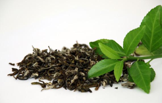 полезные свойства синего чая из таиланда