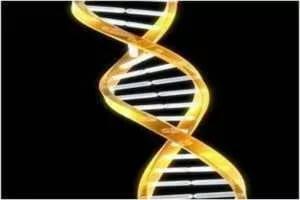 ген, влияющий на употребление кофе