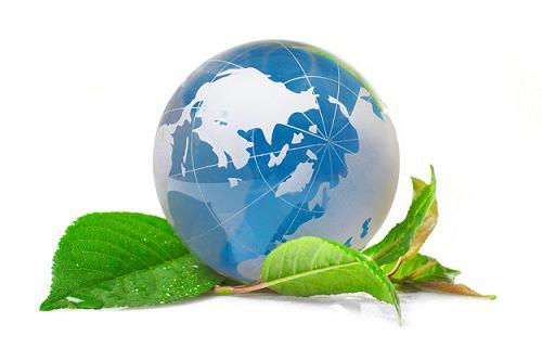 В Сочи рассуждали над реализацией законодательства о развитии чайной индустрии в Краснодаре