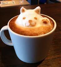 Произведения кофейного искусства